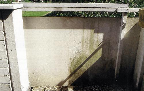 Algen und Moos auf Sichtmauerwerk wirksam entfernen