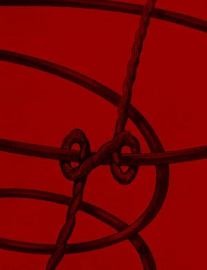 Doppel Schlingknoten