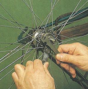 Rücktrittbremse am Fahrrad warten