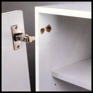 Ausgerissene Schrankscharniere reparieren