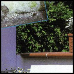 Sanierung von Putzschäden, den alten Putz restlos entfernen